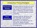 introductory pricing strategies