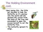 the holding environment cont