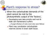 plant s response to stress