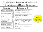 an alternative depiction of multi level determinants of health disparities