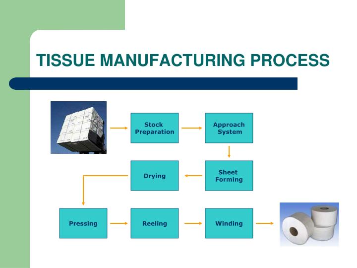TISSUE MANUFACTURING PROCESS