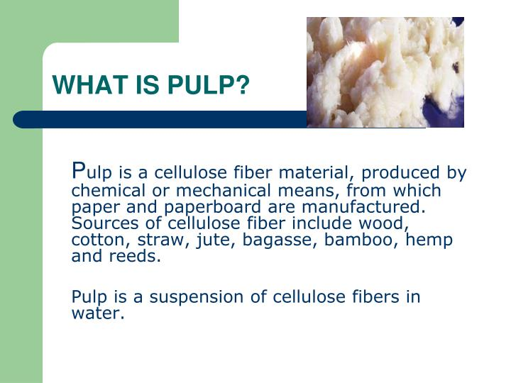 WHAT IS PULP?
