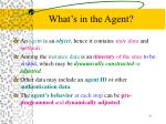 what s in the agent