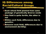 iq differences among racial cultural groups8