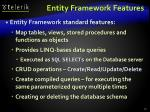 entity framework features
