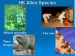 hk alien species
