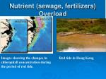 nutrient sewage fertilizers overload
