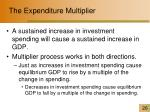 the expenditure multiplier1