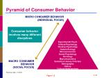 pyramid of consumer behavior