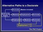 alternative paths to a doctorate