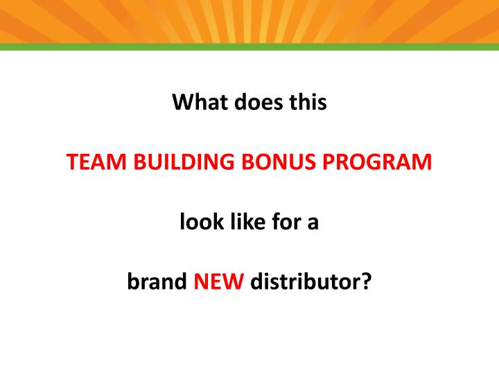 what does this team building bonus program look like for a brand new distributor n.