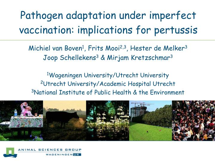 pathogen adaptation under imperfect vaccination implications for pertussis n.