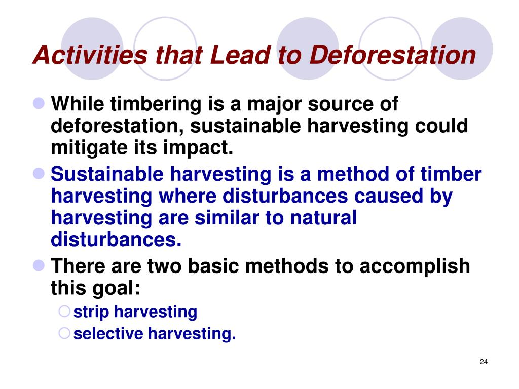 Activities that Lead to Deforestation