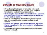 benefits of tropical forests13