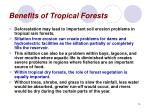 benefits of tropical forests14