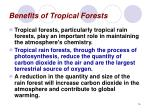 benefits of tropical forests16