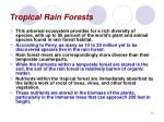 tropical rain forests10