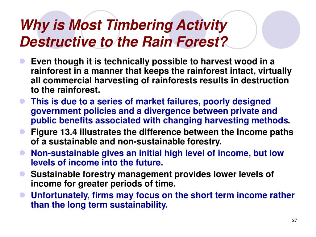 Why is Most Timbering Activity Destructive to the Rain Forest?