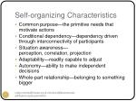 self organizing characteristics
