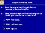 replicaci n del adn