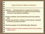 opportunities in mature industries