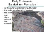 early proterozoic banded iron formation