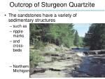 outcrop of sturgeon quartzite