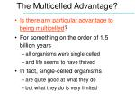 the multicelled advantage