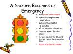 a seizure becomes an emergency