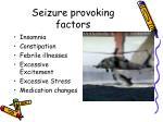 seizure provoking factors