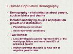 i human population demography