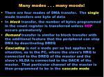 many modes many moods