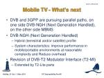mobile tv what s next