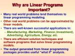 why are linear programs important