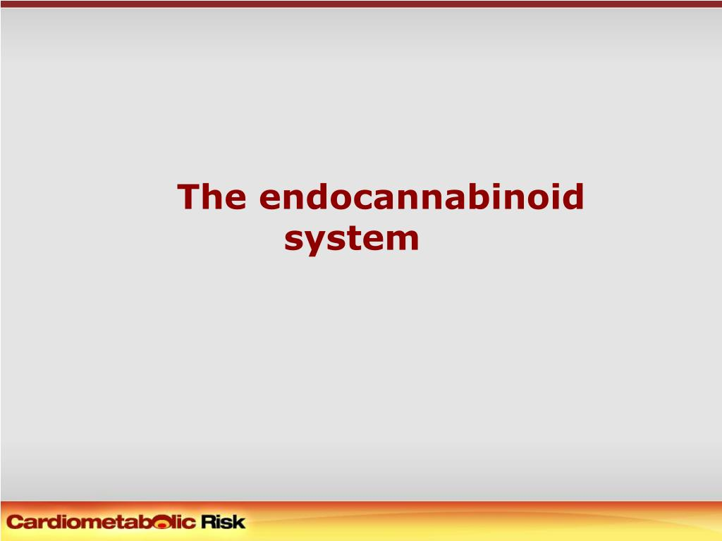 the endocannabinoid system l.