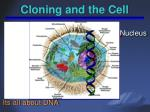 cloning and the cell