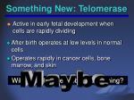 something new telomerase2
