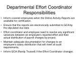 departmental effort coordinator responsibilities