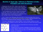 decline of gyps spp vultures in pakistan india possible link with diclofenac