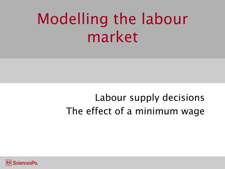 modelling the labour market n.