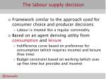 the labour supply decision