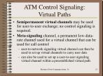 atm control signaling virtual paths