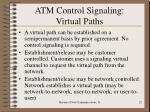atm control signaling virtual paths1