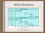 wan alternatives