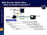 web service quick view how to access a service