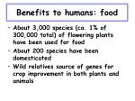benefits to humans food