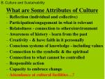 what are some attributes of culture