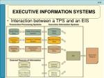 executive information systems1