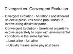 divergent vs convergent evolution