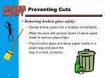 preventing cuts1